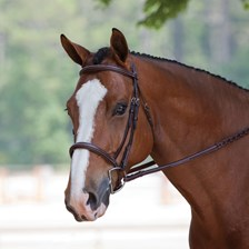 Plymouth® Elite Hunter Bridle by SmartPak
