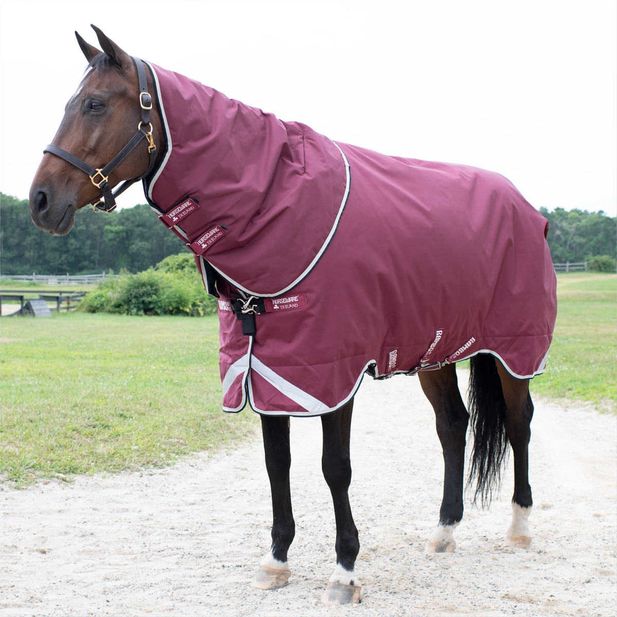 Rambo Duo Turnout Blanket Clearance