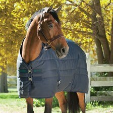 Rhino SmartPak Collection Stable Blanket - Clearance!