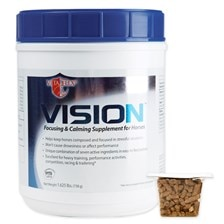 Vision™