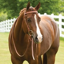 Rockin' SP® Browband Headstall - Tie End