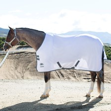 Rockin' SP® Quarter Horse Cut Fly Sheet - Clearance!