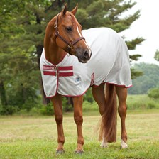 Rockin' SP® Quarter Horse Cut Fly Sheet - Clearance!