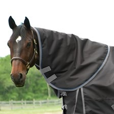SmartPak Ultimate Neck Rug