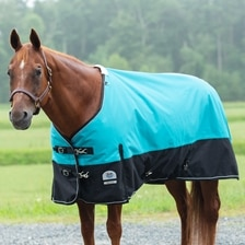 Rockin' SP® Deluxe Waterproof Turnout Blanket - Clearance!