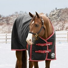 Rockin' SP® Deluxe Waterproof Turnout Blanket