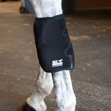 Ice Horse Knee Wrap