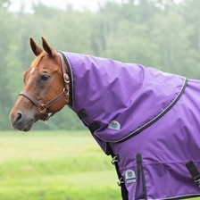 Rockin' SP® Ultimate Neck Rug - Clearance!