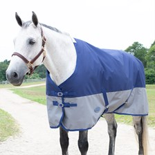 WeatherBeeta Genero 1200D Standard Neck Turnout Blanket made Exclusively for SmartPak