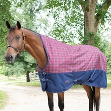 Weatherbeeta Genero 1200D High Neck Turnout Blanket made Exclusively for SmartPak - Clearance!