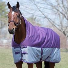 WeatherBeeta Genero 1200D High Neck Turnout Blanket made Exclusively for SmartPak