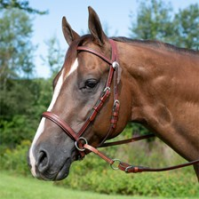 Dr. Cook® Bitless Western Headstall