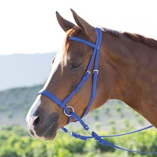 Dr. Cook® Beta Bitless Bridle with FREE Holiday Bells!