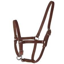 Rockin' SP® Foal Halter