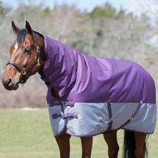 WeatherBeeta Genero 1200D Combo Neck Turnout made Exclusively for SmartPak
