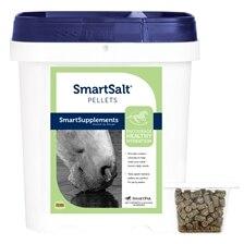 SmartSalt® Pellets