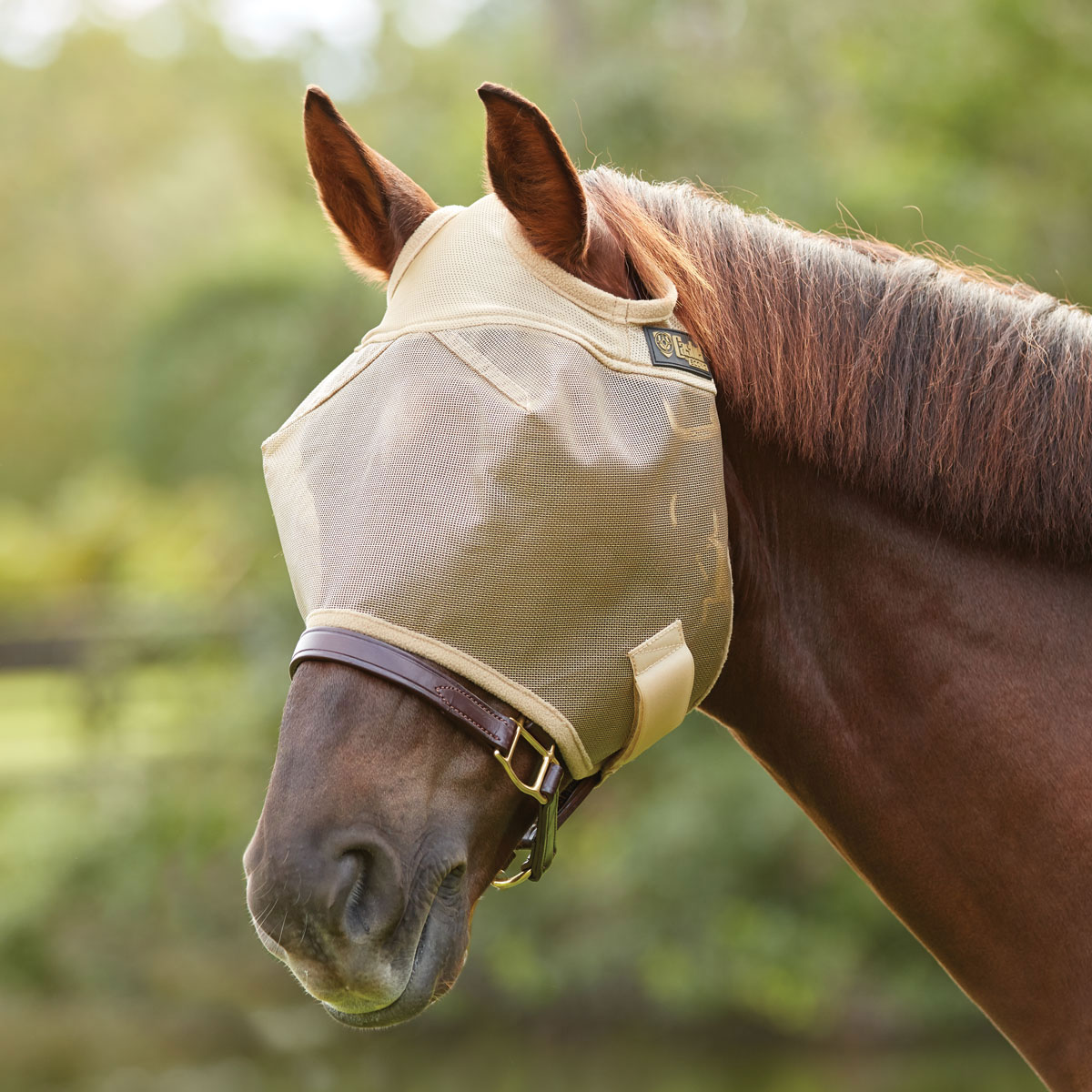 EcoCrusader Fly Mask without Ears
