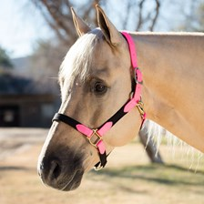 SmartPak Beta and Cotton Breakaway Halter - Clearance!