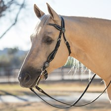 Weaver Back in Black Browband Headstall