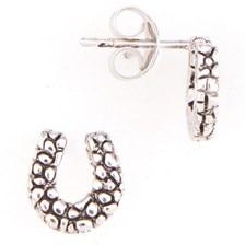 Rock Horseshoe Earrings