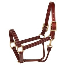 Walsh Triple Stitch British Halter
