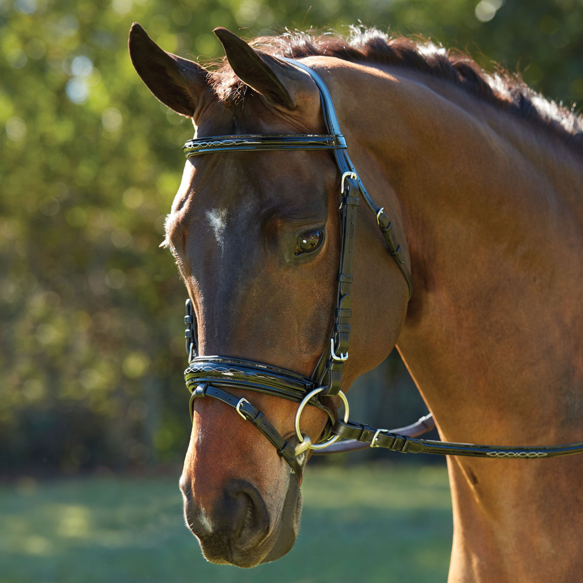 Wellfleet Patent Leather Dressage Bridle by SmartPak