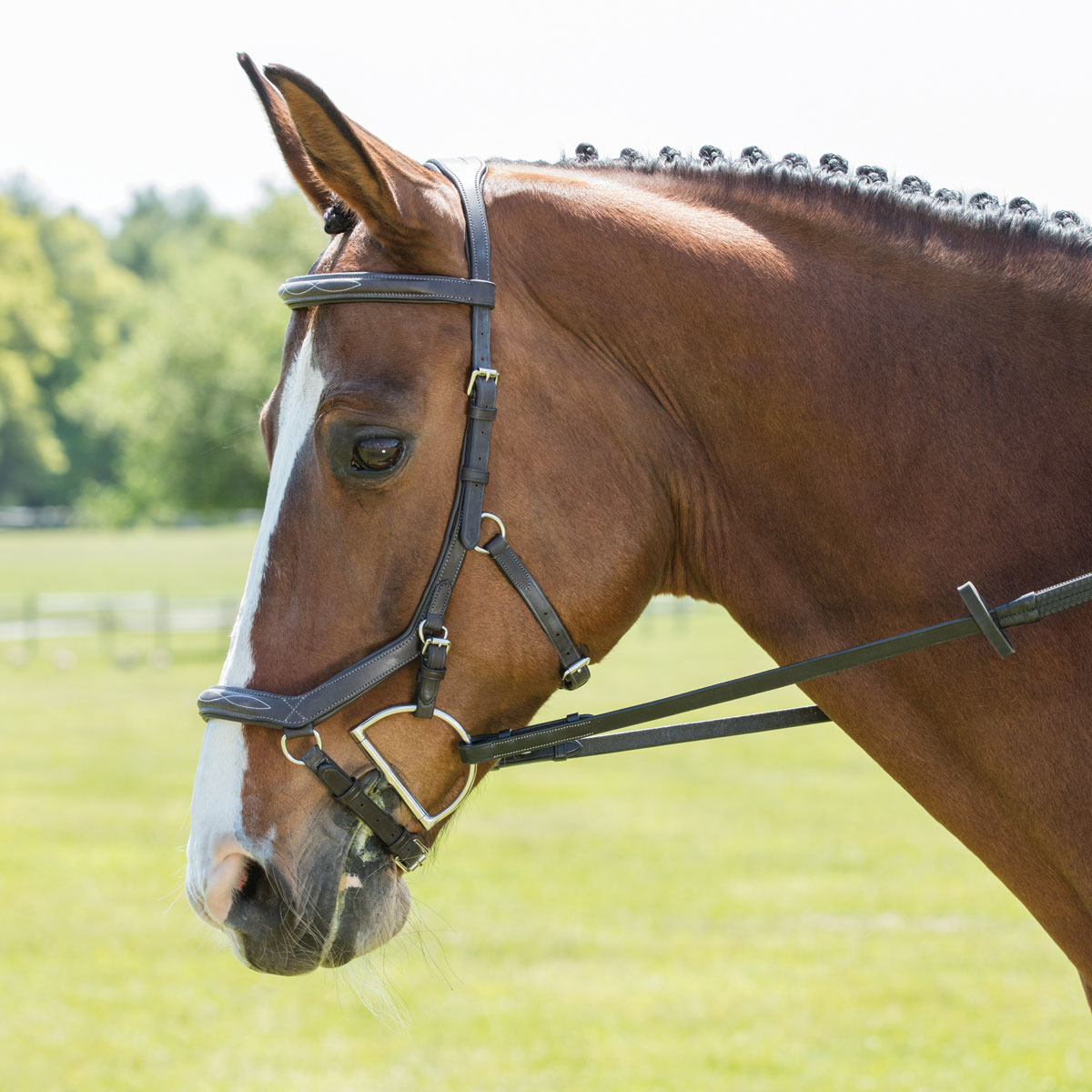 Rambo® Micklem® Deluxe Competition Bridle w/ English Leather