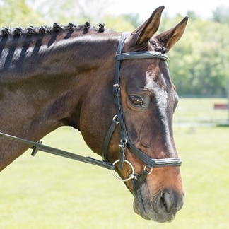 Rambo® Micklem® Deluxe Competition Bridle w/ English Leather- Clearance!