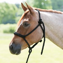 Mustang Mountain Rope Halter and Extended Lead - Clearance!