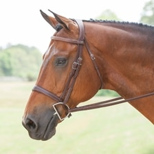 Antares Origin Hunter Bridle - Clearance!