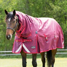 Shires StormCheeta Combo Neck Turnout Blanket - Clearance!