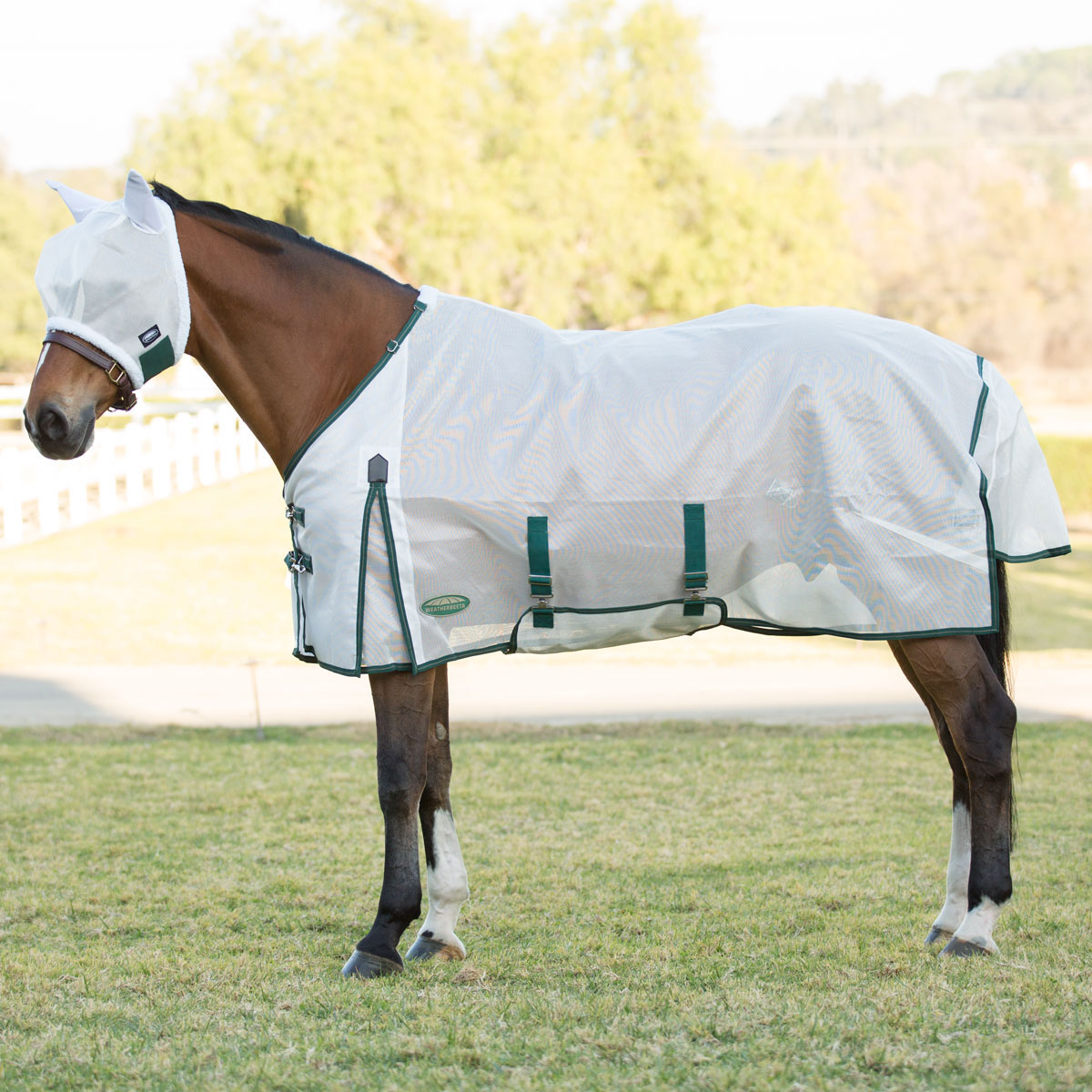 Ideal for Turnout Double Front Buckle Chest Design Stay Cool in The Sun Criss-Cross Surcingle Dura-Tech Ripstop Nylon Mesh Horse Fly Sheet Various Sizes /& Colors