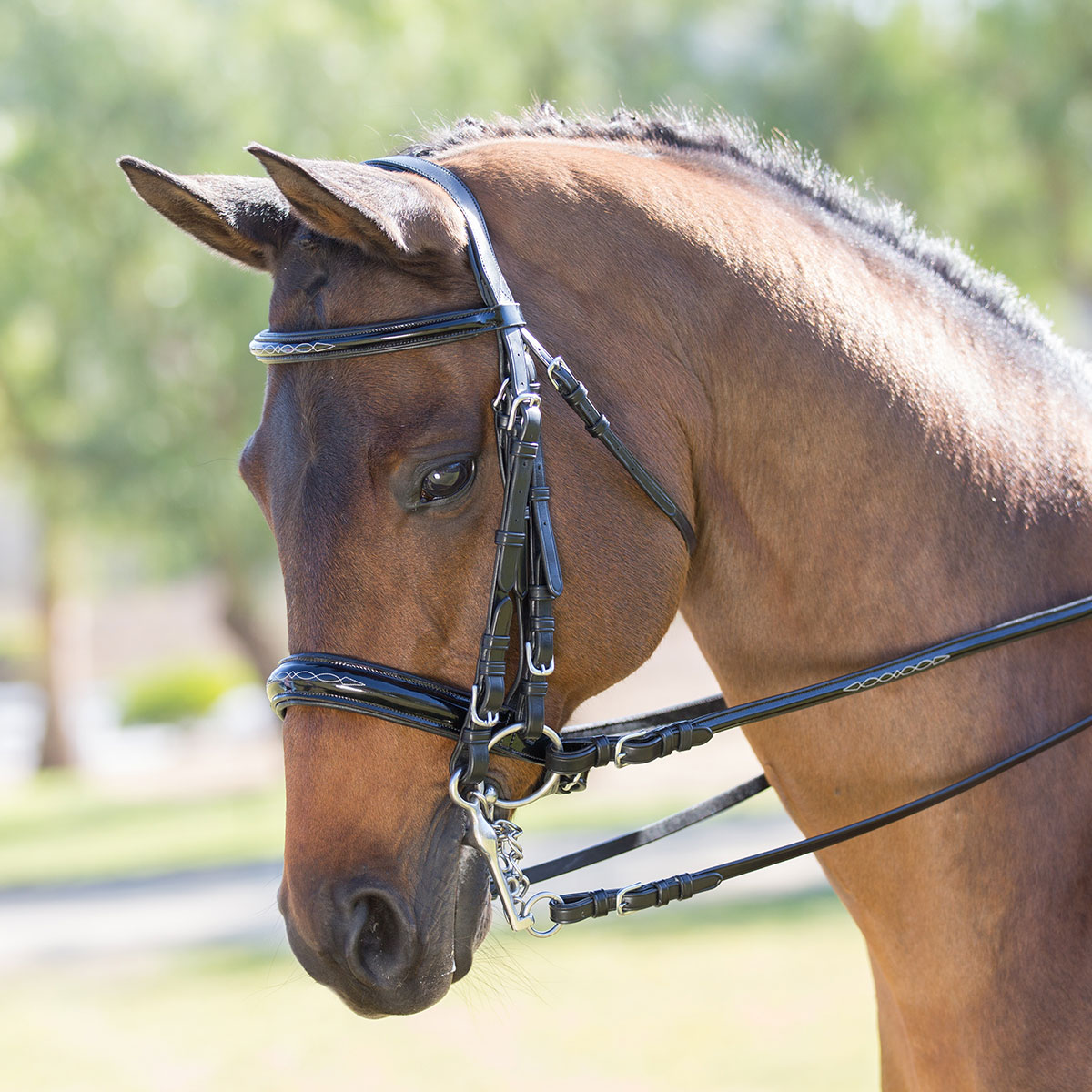 Wellfleet Patent Leather Double Bridle by SmartPak