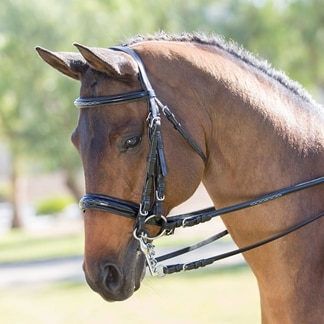 Wellfleet® Patent Leather Double Bridle by SmartPak