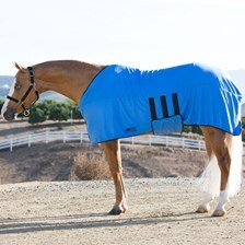 Equi Cool Down Instant Cooling Deluxe Body Wrap