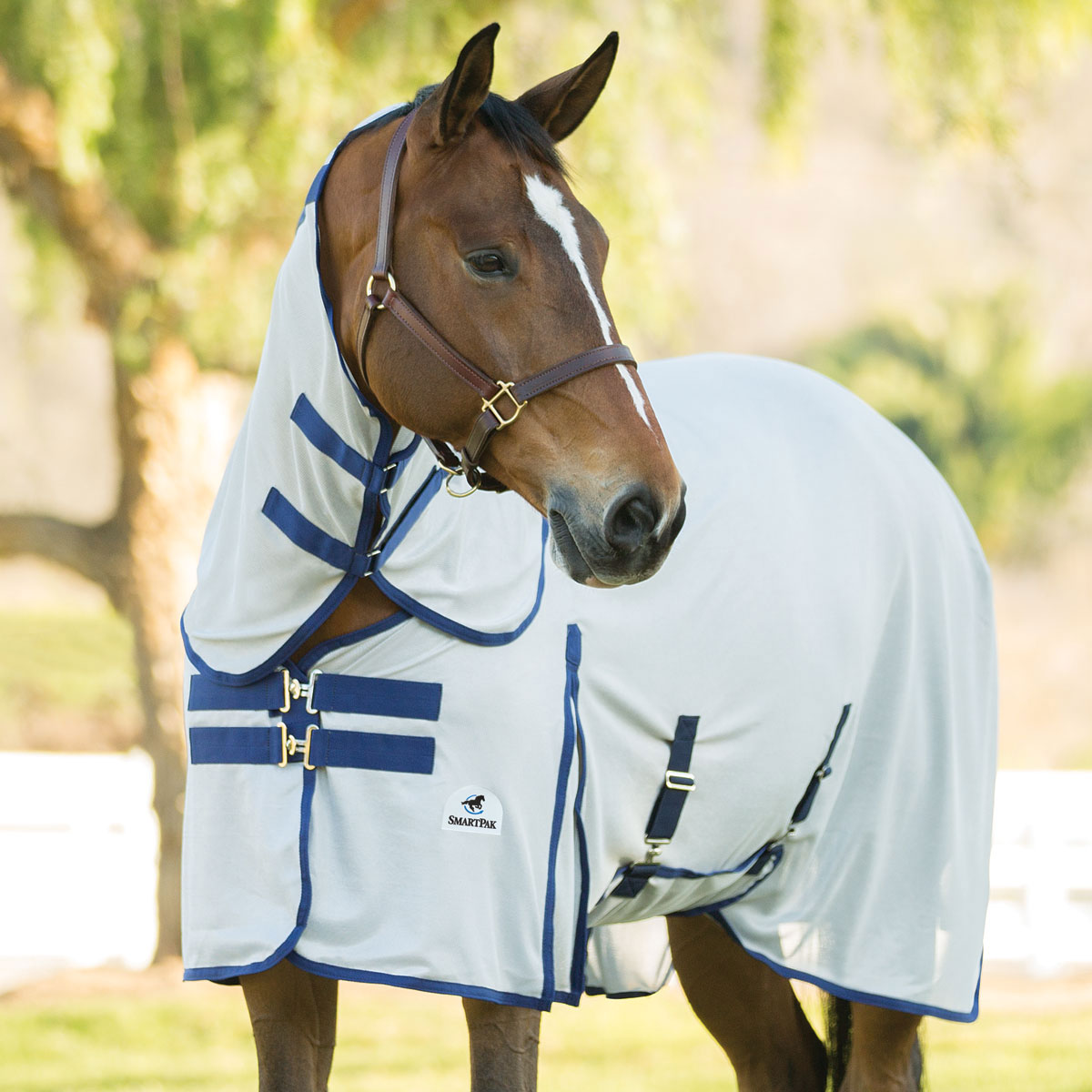 SmartPak Deluxe Fly Sheet