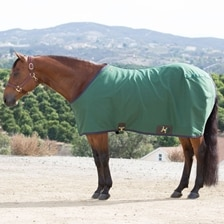 Big D Cotton Stable Sheet- Closed Front