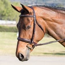Ovation Fancy Stitch Raised Padded Bridle