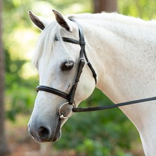 Harwich® Dressage Bridle by SmartPak