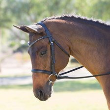 Harwich® Bling Dressage Bridle by SmartPak - Clearance