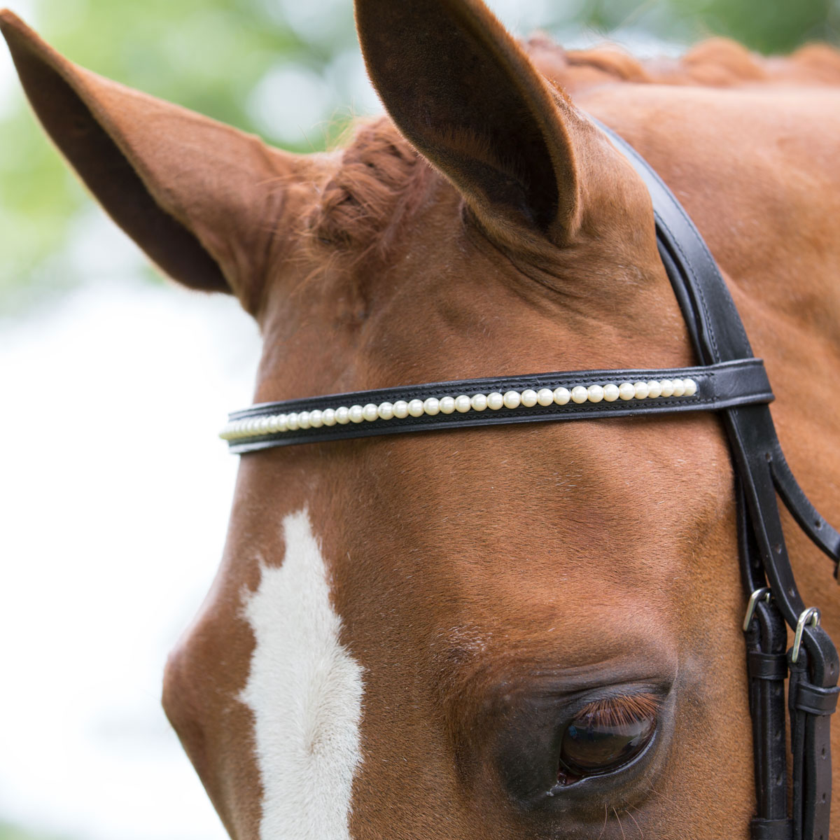 Harwich Pearl Browband by SmartPak