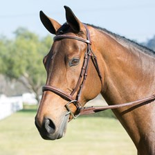 Harwich® Hunter Bridle by SmartPak