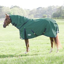 WeatherBeeta ComFiTec Plus Dynamic Detach-A-Neck Turnout Blanket