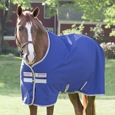 Amigo® 600D Hero 6 Turnout Sheet Made Exclusively for SmartPak