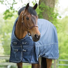Pessoa Thermal-Reflect Turnout Blanket w/ FREE Neck Cover