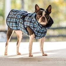 FITS All Weather Dog Coat - Clearance!