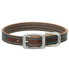 Terrain Dog by Weaver Leather - Bridle Leather with Colored Stitching Collar