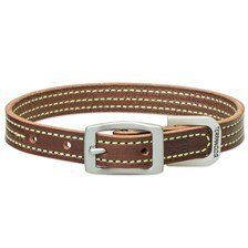 Terrain Dog by Weaver Leather - Bridle Leather with Colored Stitching Collar - Clearance!
