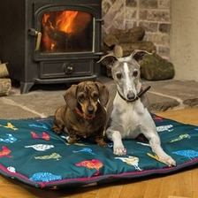 Shires Waterproof Dog Bed