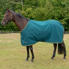 Shires Tempest Original Lite 600D Turnout Sheet
